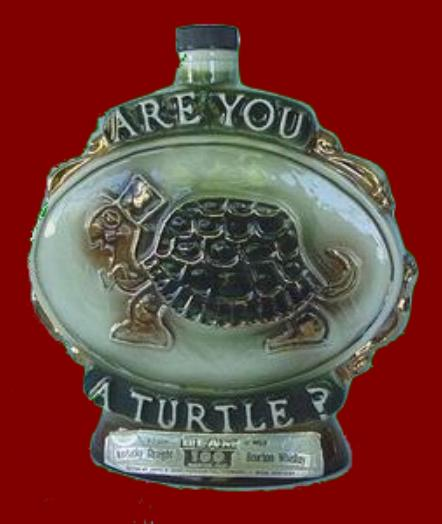 The Official International Association of Turtles Mascot.